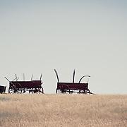 abandon waggons on the prairie conservation photography - montana wild prairie