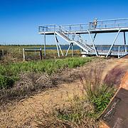 Birdwatcherer at the Matt Cook Wildlife Viewing Platform at  Katy Prairie, in west Harris County, Texas.
