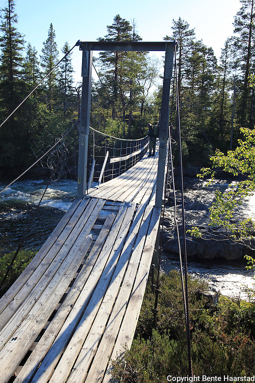 Rotla, Roltdalen nasjonalpark. Foto: Bente Haarstad