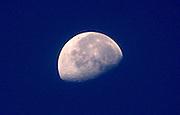 Half moon as seen from Jekyll Island beach at dusk.