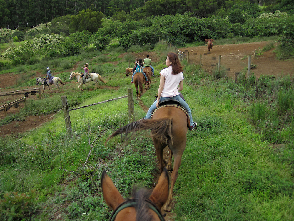 Horseback Riding Big Island Hilo