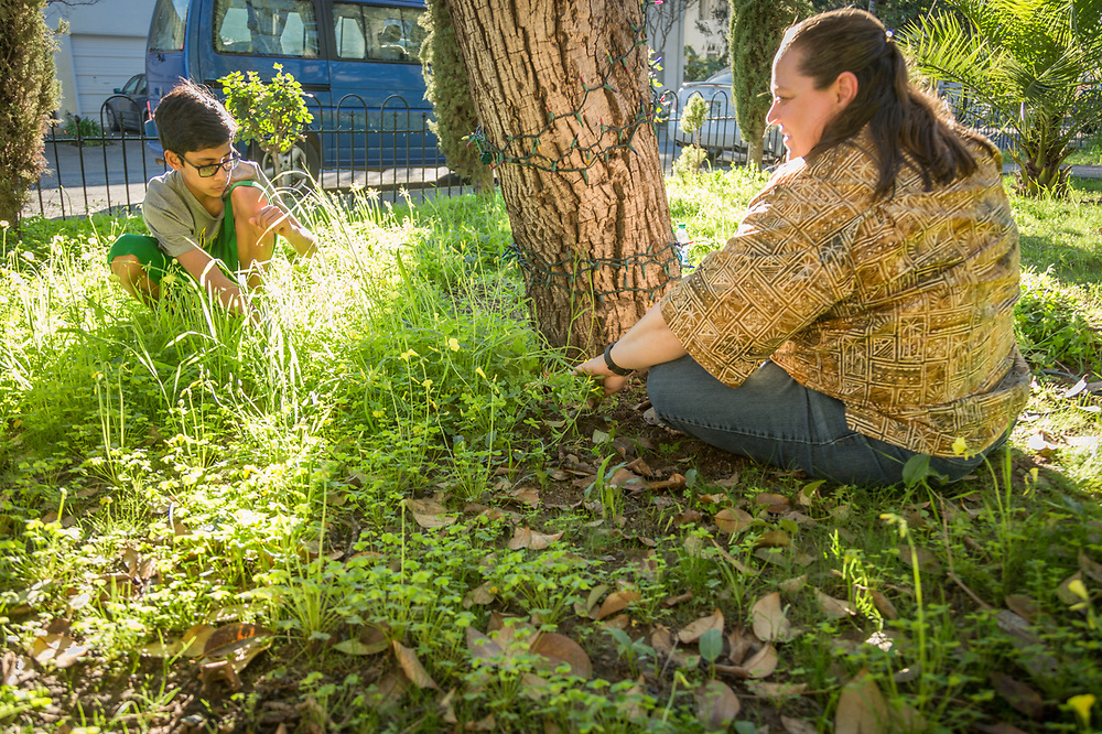 """My son agreed to give me a half hour of his time to pull weeds with the hope of encouraging the grass to grow so we can have a front lawn.  Despite our efforts,  it appears the weeds are winning.""  -Calistoga School System music teacher Nina Pedersen with her thirteen year old son, Christian"