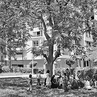 Egypt / Syrian refugees / Members of an extended Syrian family of refugees who have been in Egypt for 3 months take shelter from the sun under a tree in a park in central Cairo, Egypt, Tuesday, May 28, 2013. Many Syrian refugees fled the violence in their homeland and were displaced to neighboring countries, including Egypt. The Ministry of Foreign Affairs estimates that there may be almost 150,000 Syrian refugees in Egypt, most of whom reside in the cities of Cairo and Alexandria.  / UNHCR / Shawn Baldwin / May 2013