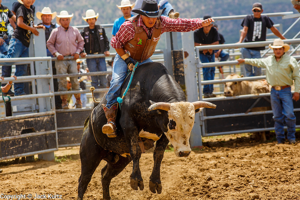 how to get started in bull riding