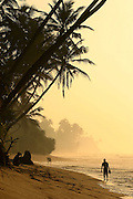 Sri Lanka South Coast Beach Scene