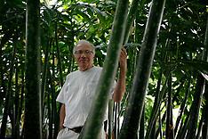 Louis Ricciardiello