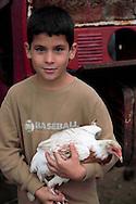 A boy with his chicken at a farm in Playa La Altura, Pinar del Rio, Cuba.