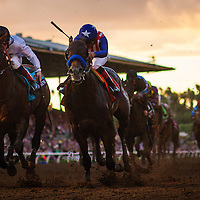 November 01 2014: Bayern , ridden by Martin Garcia defeats Toast of New York and Jamie Spencer to win the Breeders' Cup Classic (G1) at Santa Anita Park in Arcadia, California on November 1, 2014.  Alex Evers/ESW/CSM