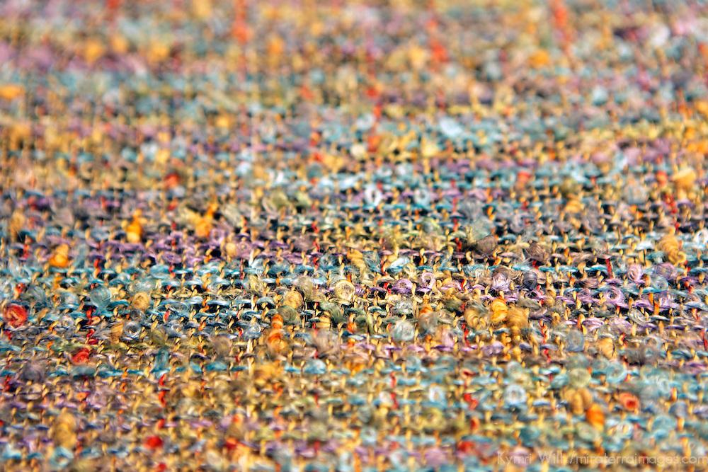Europe, Ireland, Avoca. Avoca Handweavers Mill, County Wicklow. Woollen textile.