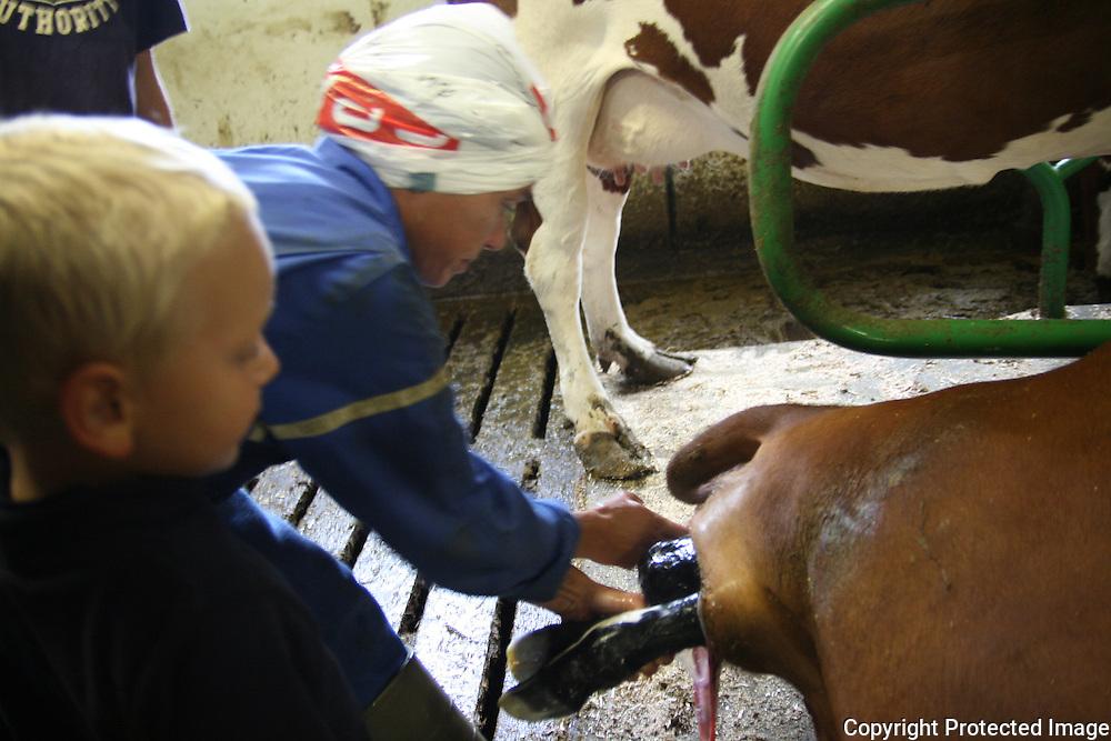 Det ble født en kalv omtrent med en gang ungdomsskoleeleve kom inn i fjøset for å delta i kveldsstellet. Det var tydeligvis en stor opplevelse for 14-åringene. Marit grøtte tok imot kalven, godt hjulpet av fireåringen Erik og nabogutten Lars Garberg. Foto: Bente Haarstad
