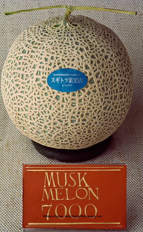 The musk melon is grown only in Japan. They are often given as gifts when visiting someone in the hospital.  They are grown in well controlled greenhouses and in 2012 sell for more than 10,000 yen.  They come with a seal indicating the best date to taste.