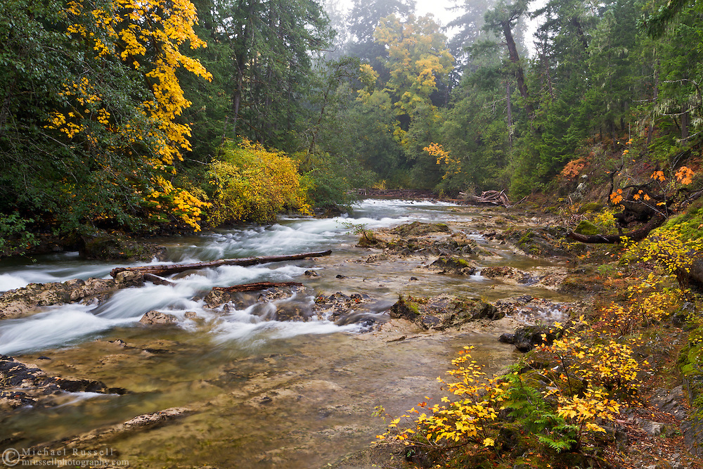 The Little Qualicum River and Fall colours at Little Qualicum Falls Provincial Park in the Nanaimo Regional District, British Columbia, Canada