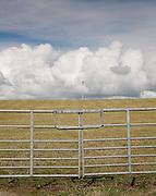 Field gate, telegraph line and white clouds in a field near Stranrear, Scotland