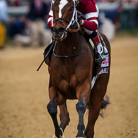 May 01, 2014: Untapable with Rosie Napravnik wins the Kentucky Oaks at Churchill Downs in Louisville Ky. Alex Evers/ESW/CSM