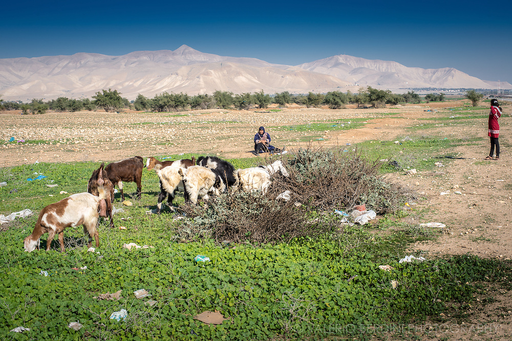 A Palestinian woman and her daughter look after their flock of goats in a rural area of West Bank on route1