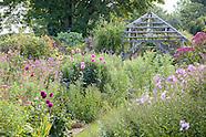 August at Wollerton Old Hall Garden