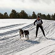 Sunset Ridge  1 and 2 dog skijour