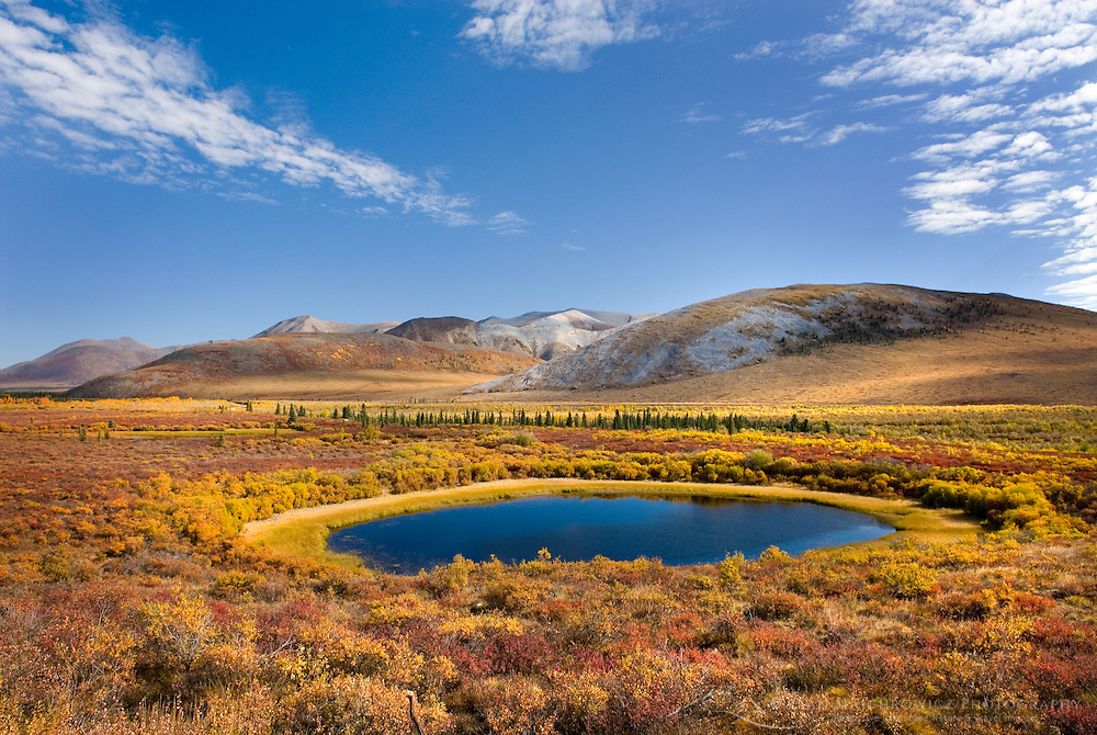 Small pond in the colorful autumn tundra of the Blackstone Plateau, Tombstone Territorial Park Yukon Canada