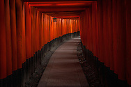 "The tunnel of torii gates at Fushimi Inari Shinto Shrine.  Kyoto, Japan.  The rows of torii are called ""senbon torii"" or ""thousands of torii gates"".  Some suggest there are 10,000 but the effect is wandering up a mountain through a tunnel through the forest.  The god of rice, Inari is represented by a fox, which is said to be his messenger.  In the present-day Japan, Inari shrines are where people come to pray for good fortune in the business sphere."