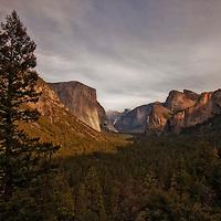 Yosemite Fall 2013