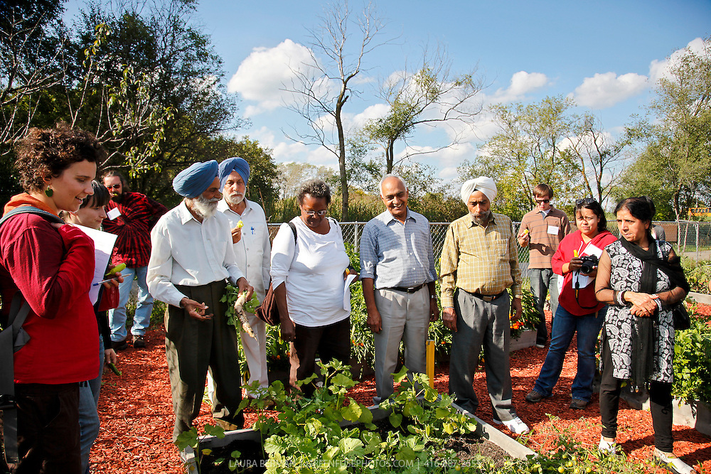 Tour participants at Punjabi Seniors Community Garden, third stop on the World Crops Project City to Country tour.
