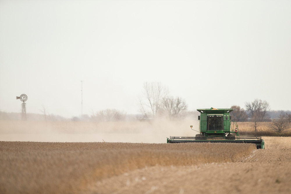 Dave McEachren harvests his field of soy beans in his field near Glencoe, Ontario, Monday, November 3, 2014.<br /> Farmers Forum/ Geoff Robins