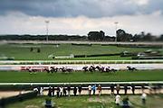 Roma - 07 Novembre 2010.Derby equitazione all' Ippodromo di Capannelle.Vista del campo di gara.foto:Stefano Meluni
