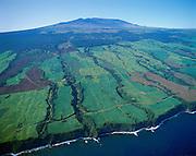 Slopes of Mauna Kea, Hamakua, Island Of Hawaii, USA<br />
