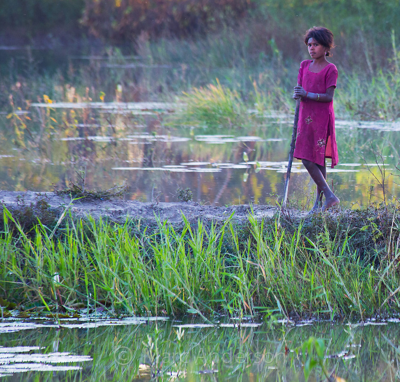 Young swineherd girl standing by a wetland in the Terai region of Nepal