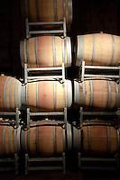 BARRICAS DE ROBLE FRANCES EN LA CAVA DE LA BODEGA ANDELUNA CELLARS, TUPUNGATO, VALLE DE UCO, PROVINCIA DE MENDOZA, ARGENTINA - PHOTO © MARCO GUOLI