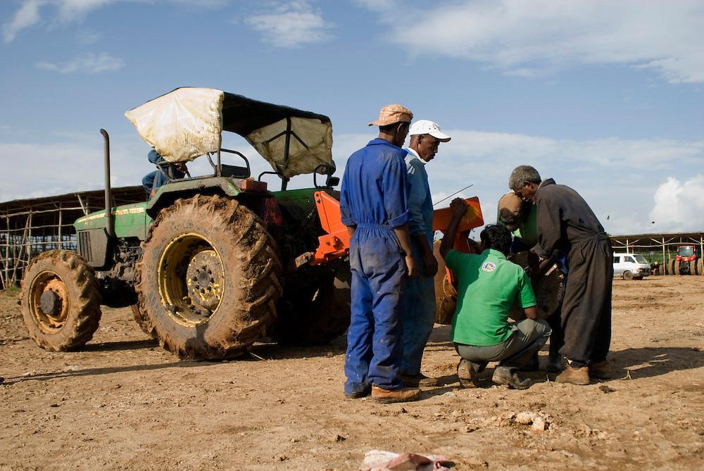 Ferme Karuturi à Bako, à 300 km à l'ouest d'Addis Abeba. Ram Karuturi, à la tête de la multinationale Karuturi PLC Agriculture Company, loue ici 11 790 hectares à l'État Éthiopien depuis 2008 et ce pour une durée de 49 ans. Leurs tracteurs, des Steiger 450, des John Deer et des Magnum 275 ont été importé et assemblé sur place. Dix-neuf indiens travaillent à la ferme de Bako ainsi qu'une quarantaine de permanents Éthiopiens auxquels s'ajoutent cent cinquante journaliers Éthiopiens. Éthiopie août 2011.