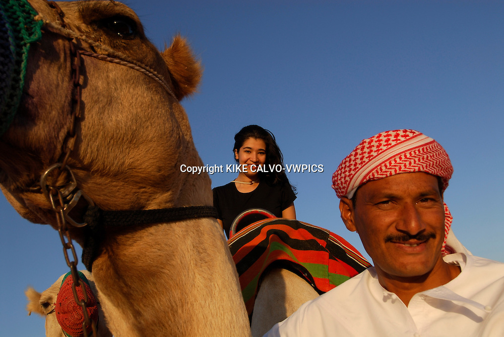A desert safari is an exhilarating way of discovering Dubais natural beauties. Camel ride at sunset. Dubai Conservation Desert Reserve.<br />Dubai. United Arab Emirates..