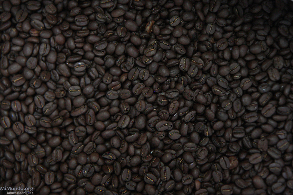Roasted coffee beans from the Campesino Committee of the Highlands (CCDA, in Spanish) for the well known Cafe Justicia coffee brand. The CCDA was founded in 1982 as an organization that works to defend the rights of workers on large coffee, sugar and cotton plantations, to recover lands taken from the Mayan communities over the past centuries, and to promote and recover Mayan culture and spirituality. Today about 100 communities in 11 Guatemalan provinces are affiliated to the CCDA, but the organization is strongest in the Madre Vieja valley of Sololá. Quixaya, San Lucas Toliman, Solola, Guatemala. March 2, 2010.