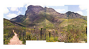 Stirling Ranges, Western Australia Panorama