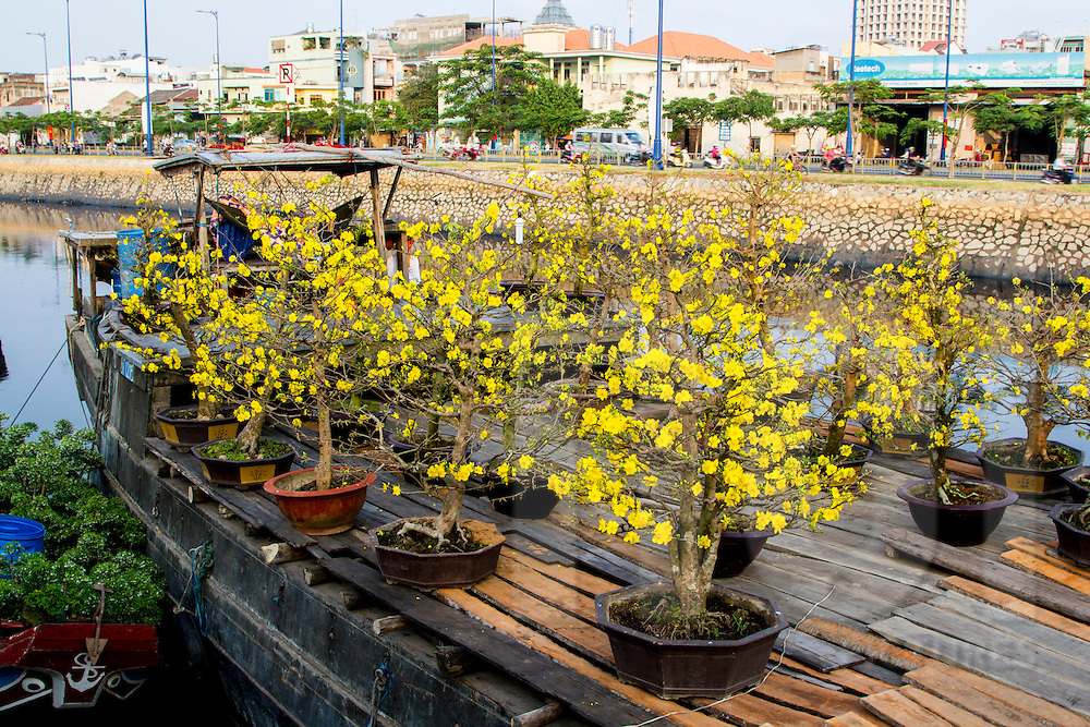 Small potted flowering trees on boat deck for sale in floating flower market in District 6 of Ho Chi Minh City, Vietnam, Southeast Asia
