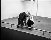 1973 - Former Miss World Visits Dublin Zoo.   E27.