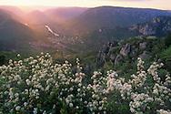 France, Gorges du Tarn, Peyreleau et le Rozier