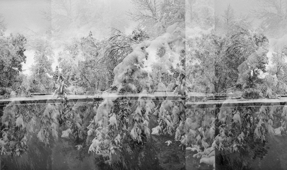Multiple exposure of Varsity Lake, on the University of Colorado campus, in winter in Boulder, Colorado.