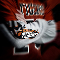 Tigers PR & Recruitment