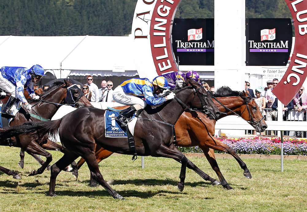 Historian ridden by Rosie Myers, right, crosses the line in front to win the 1600m Group I Harcourts Thorndon Mile at Trentham Racecourse, Wellington, New Zealand, Saturday, January 26, 2013. Credit: SNPA/Dean Pemberton.