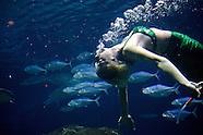 Weeki Weechi Mermaids - BS0782