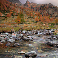 This is Pian della Casa del Re (literally, King House's Plain), a beautiful plateau at almost 2000m (6000 ft) in the heart of the Alpi Marittime Natural Park in Piedmont, Italy. Taken on a evening of the end of October. Autumn colour seemed to be at their top up there, but the first snow of the year would have probably fallen that night, as a cold front was rapidly approaching from the west. .