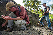Kerry Sieh, American geologist and seismologist, and Director of Natural Hazards at the Earth Observatory of Singapore looks for evidence of a tsunami in layers in the soil next to beach during a research expedition on November 19, 2014 in Lubhok Bay Beach, on the Lambaro headlands, Indonesia. Geological and archeological studies produced evidence of ancient tsunami events about six centuries ago, pointing to another potential Indian Ocean earthquake and tsunami in this century. Ann Hermes/© The Christian Science Monitor 2014