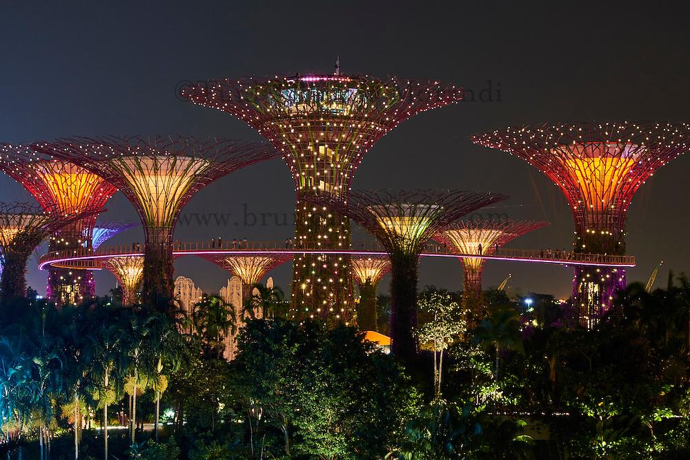 Singapore garden by the bay supertree grove bruno for Au jardin les amis singapore botanic gardens