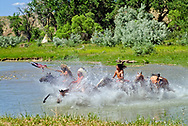 Custers Last Stand Reenactment on Little Bighorn River, Crow Indian Reservation. Warriors with captured horses and flag after defeating 7th Cavalry.