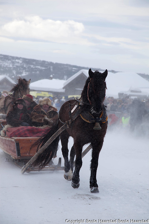 Over eighty equipages from Sweden, Østerdalen, Hedmark, Gauldalen and Tydal participate in the openjing parade, after travelling for up to 15 days with horse and sleighs.
