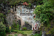 Indonesia, Sulawesi, Tana Toraja. Burial cliff with tau tau in Lemo.<br /> <br /> Tana Toraja, situated in the south of Sulawesi, sometimes reminds alive museum full of traditional boat-shaped houses painted with Torajan patterns, burial caves or hanging graves guarded by tau tau (a deceased shaped wooden sculptures(, all of them situated in a beautiful scenery of green rice terraces.