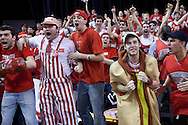 BOSTON - March 12, 2011 - Fans cheer as Boston University senior, John Holland ties the game with seconds left on the clock. The BU Terriers defeated Stony Brook in the America East Championship to move onto the NCAA Tournament. (PHOTO/MATT WRIGHT)