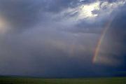Rainbows, South Park