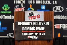 Gennady Golovkin vs. Dominic Wade